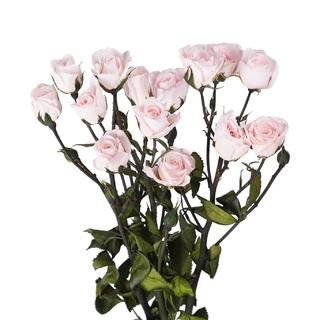 Мыльная роза Мастер-класс своими руками 26