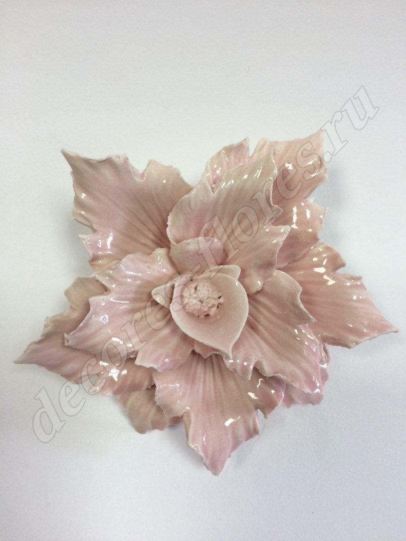 Фарфоровые цветы наполеон италия купить живые цветы в подмосковье